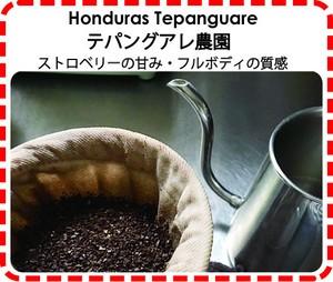 【今年のホンデュラスは美味しい!!】 テパングアレ農園       200g  1600円(ホンジュラス産珈琲豆)