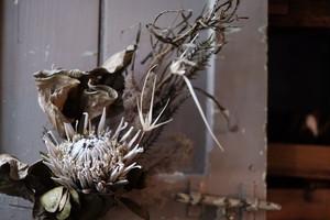 スワッグ-キングプロテアとモノトーンな植物達