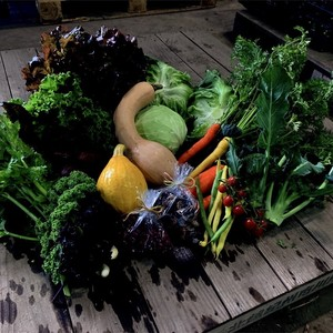 【大人気】気まぐれマミーの野菜セット☺︎ 秋の味覚です。