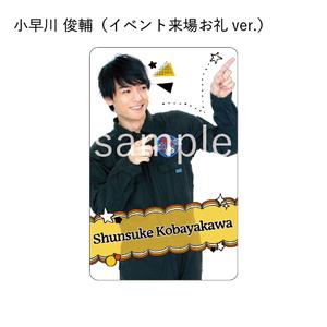 猫のひたいほどワイド 37card(小早川俊輔)