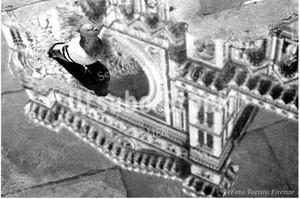 1971年撮影 イタリア 水たまり 大聖堂 鳩【420197101】