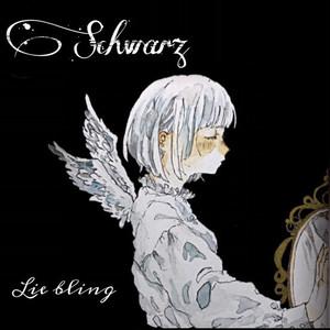2nd single 「Schwarz」