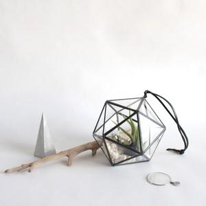 "hanging terrarium ""正二十面体"" / black [エアプランツ]"