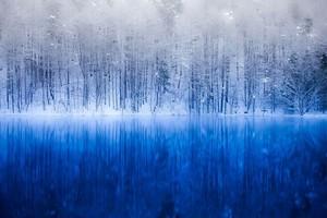 冬の御射鹿池