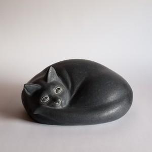 猫9 Cat9