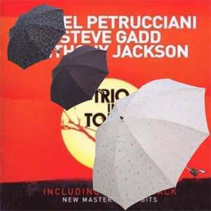 傘 日傘 折りたたみ傘 レディース パラソル ラインフラワー刺繍 軽量・2段 50cm