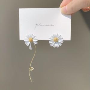 daisy pierce
