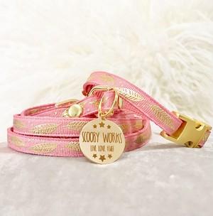 Collar and leash set (Anastasia) リードと首輪のセット