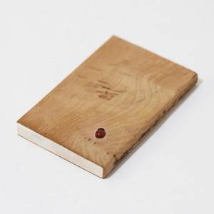 Book and ladybug|友成哲郎