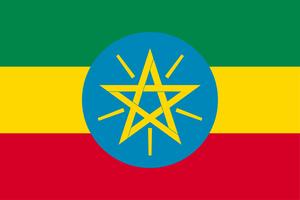 エチオピア(デカフェ) シダモG4