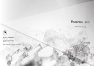 認定DNAプランナー・アドバイザー専用 Extreme salt《パンフレット100部》