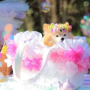 2kg用 ドッグキャリー リボン付きカゴバッグ ♡ピンクグラデーション♡