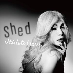 臼井嗣人3rd ALBUM オリジナル CD 【Shed】