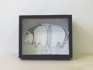 """""""fantarium""""標本原画 sliced pig"""