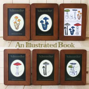 ●キノコ図鑑シリーズ2●アンティークキノコ図鑑のポストカード6種類セット