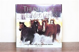 THUNDER OF THE MUSTANG /display book