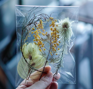 special dried & preserved flower pac 【YELLOW GREEN】