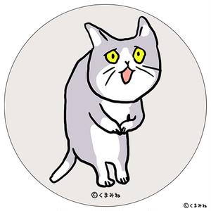 【9/23発売】「これからしかられるネコ」白雲石コースター