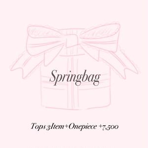 Spring bag ❤︎¥7,500