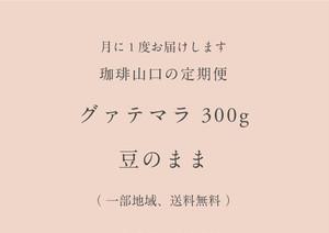 【定期便】グァテマラ 300g  豆のまま(送料無料)