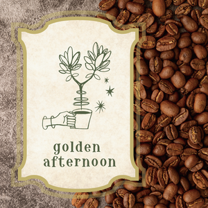 【豆or粉】Golden afternoon  -original blend-