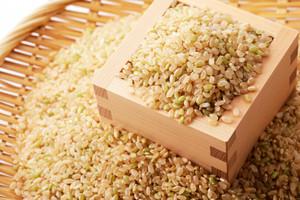 水口農家さんの玄米5キロ