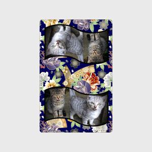 花と子猫カードケース