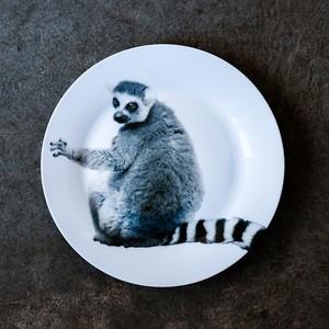 動物たちの飾るお皿  「ワオキツネザル」