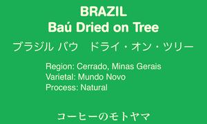 【ブラジル】 Baú バウ ドライ・オン・ツリー ☆中深煎り 200g
