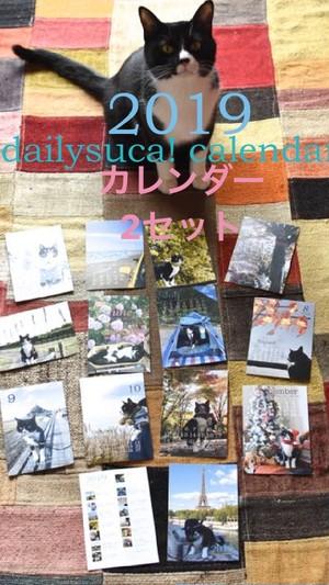 《カレンダー》2セット*割引きあり!*dailysuca!  calendar! 2019*
