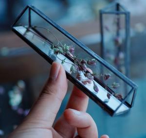【※お在庫2点】植物標本:プリザーブドフラワー『オレガノ・サンタクルーズ』