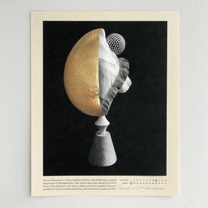 DOZEN DUMMIES ⅸ-01 / Takahiro Murahashi
