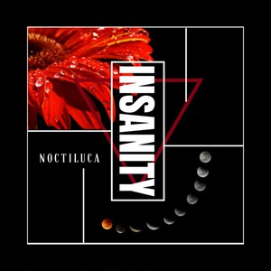 1st single 「INSANITY」