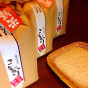 30年度産 栗原農園のこしひかり 白米5kg ×2袋(計10㎏)
