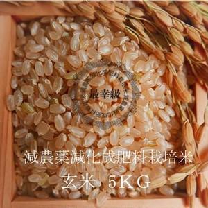 減農薬栽培 〈元年産〉南魚沼産コシヒカリ 玄米5kg
