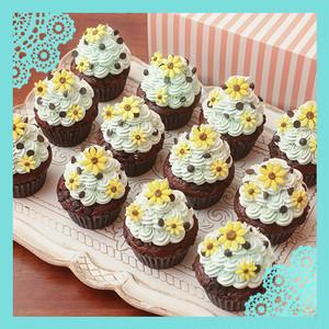 夏限定! チョコチップミントカップケーキ 12個セット