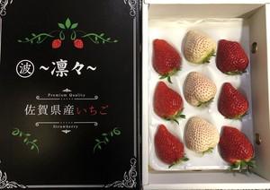 紅白イチゴ(いちごさん、天使のいちご)