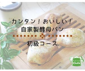 【リピーターさま限定】自家製酵母パン 動画レッスン 初級コース