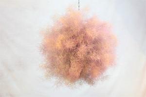 スモークツリーのフラワーボール(吊り下げタイプ)