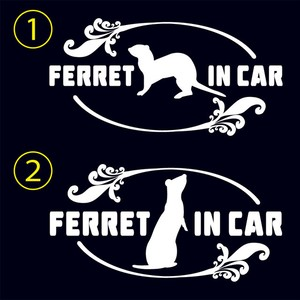 FERRET IN CAR