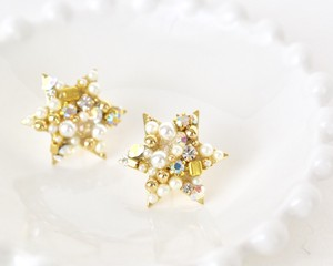 Brilliant star pierce/earring