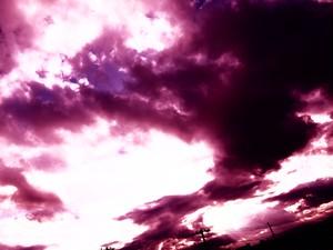 夕陽 (紫) 12