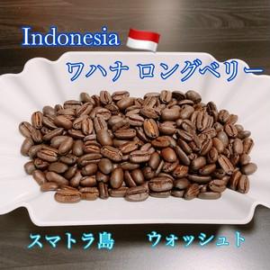 Indoneshia ワハナ ロングベリー