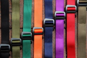 SWRVE / WEBBED BELT