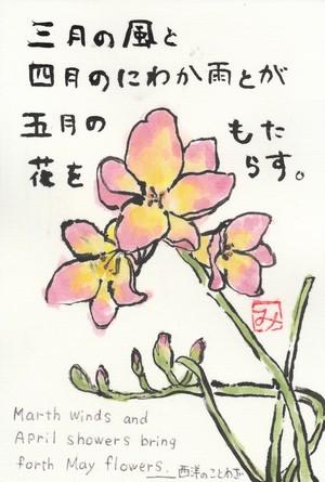 絵葉書(春の風)