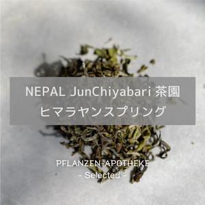 NEPAL JunChiyabari茶園 ヒマラヤンスプリング