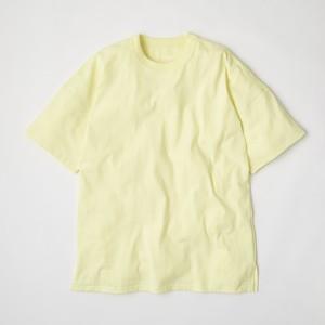 MODEL008(2020) Lemonade
