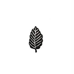 葉っぱ 小