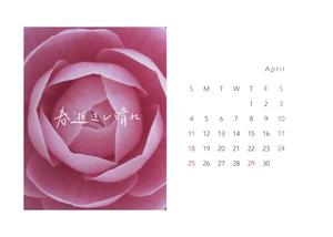 カレンダーカード (紙のみ / 4月始まり)