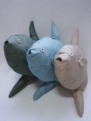 マンボウ Ocean sunfish